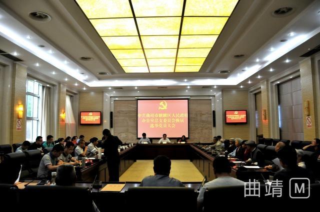 麒麟区政府办公室党总支顺利举行换届选举